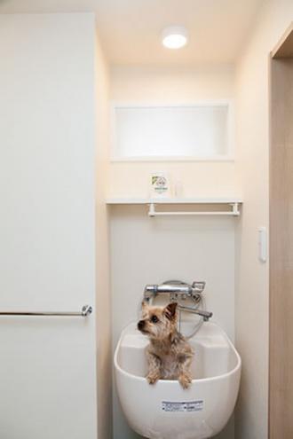 愛犬用のシンク。浴室を広くしたい、狭い玄関や古くなったキッチンを改修したい、との要望でマンションリフォーム。大胆な間取り変更。明るさを確保したキッチン、玄関ホールや洗面室、ユーティリティ。愛犬用のシンクを設置。「水回りを大胆に変更 風と光が心地よい暮らしへ」のリフォーム事例です。施工は札幌のSAWAI建築工房