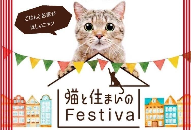 猫との暮らしを楽しむ&ボサノバイベント!