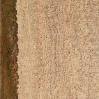 ヤチダモの杢:希少な材で玉杢や縮杢などがあり、装飾用として珍重される